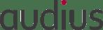 audius | IT-Dienstleistungen & Software für Unternehmen